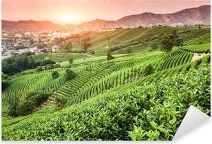 Green tea garden on the hill,china Pixerstick Sticker