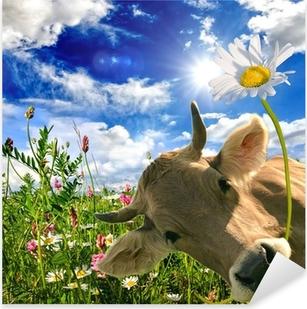 Pixerstick Sticker Happy birthday: Koe geeft een bloem :)