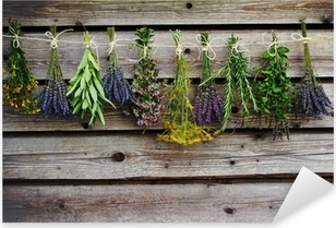 Herbs drying on the wooden barn in the garden Pixerstick Sticker