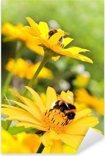 Pixerstick Sticker Hommels op zonnebloemen in de zomer tuin