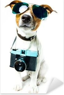 Pixerstick Sticker Hond fotocamera