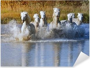 Horse Splash Pixerstick Sticker