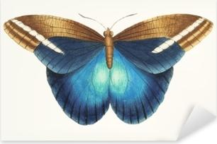 Pixerstick Sticker Illustratie van dierenkunstwerk