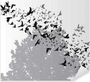 isolated, silhouette flying birds Pixerstick Sticker