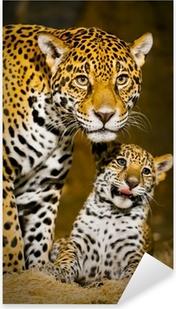 Pixerstick Sticker Jaguar Welpen