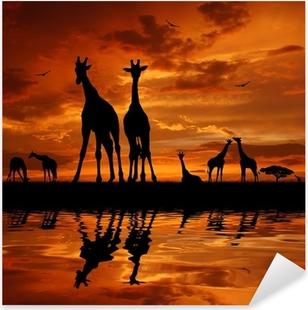 Pixerstick Sticker Kudde giraffen in de zonsondergang