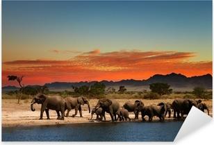 Pixerstick Sticker Kudde olifanten in Afrikaanse savanne