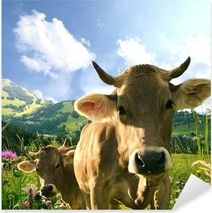 Kühe Pixerstick Sticker