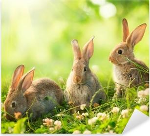 Sticker Pixerstick Lapins. Design Art de mignons petits lapins de Pâques dans le pré.