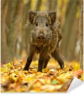 Sticker Pixerstick Le cochon sauvage