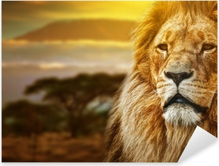 Pixerstick Sticker Leeuw portret op savanne achtergrond en Mount Kilimanjaro