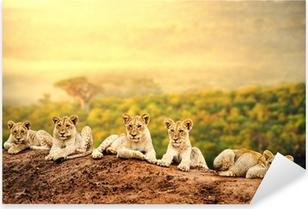 Pixerstick Sticker Leeuwenwelpjes wachten samen.