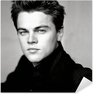 Leonardo DiCaprio Pixerstick Sticker