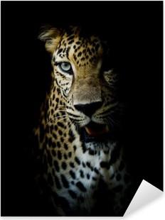 Leopard portrait Pixerstick Sticker