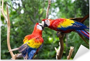 Pixerstick Sticker Liefde Parrot