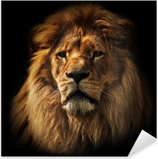 Lion portrait with rich mane on black Pixerstick Sticker