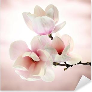 Pixerstick Sticker Magnolia