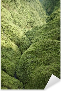 Maui Rainforest. Pixerstick Sticker