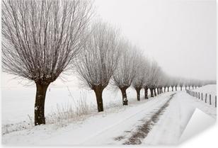 Misty winter landscape in the Netherlands with a row of pollard Pixerstick Sticker