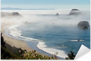 morning fog along coast at Brookings, Oregon Pixerstick Sticker