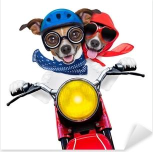 motorbike couple of dogs Pixerstick Sticker