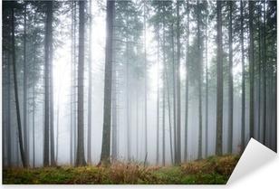Mysterious fog in the green forest Pixerstick Sticker