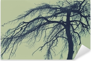 Mysterious tree, scary forest Pixerstick Sticker