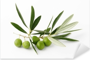 Olive verdi e ramoscelli - Olive green and twigs Pixerstick Sticker