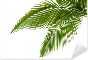 Palm leaves Pixerstick Sticker