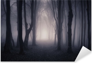 path through a dark forest at night Pixerstick Sticker