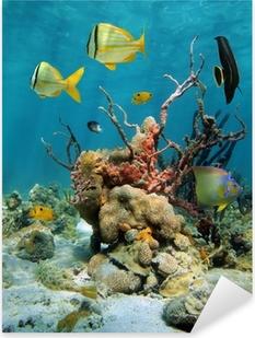 Sticker Pixerstick Paysage sous-marin coloré avec des coraux et des éponges de mer