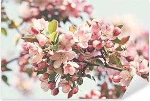 Pink apple blossoms in spring Pixerstick Sticker