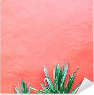 Plants on pink concept. Aloe on pink background wall. Minimal art Pixerstick Sticker