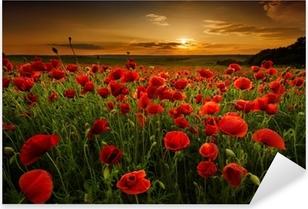 Poppy field at sunset Pixerstick Sticker