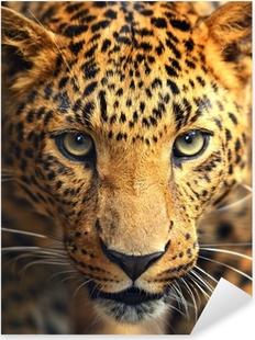 Sticker Pixerstick Portrait Leopard