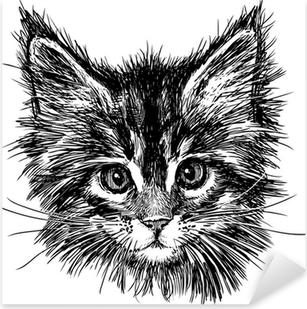 portrait of cat Pixerstick Sticker