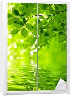 Sticker pour armoire Feuilles vertes