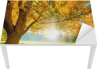 Sticker pour table et bureau Bel arbre d'automne avec des feuilles sèches tombées
