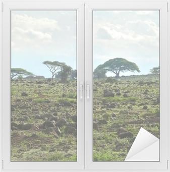 Sticker vitre Le paysage nature du Kenya. Kenya. Afrique.