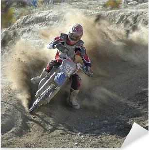 racer119 Pixerstick Sticker