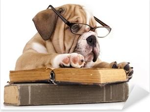 Pixerstick Sticker Rasechte Engels Bulldog in glazen en boek