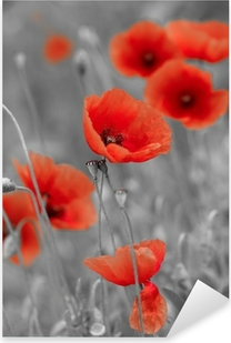 red poppies on b/w field Pixerstick Sticker