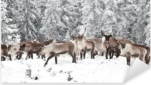 Pixerstick Sticker Reindeer