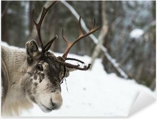 Sticker Pixerstick Renne se tenant dans la neige
