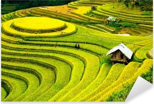Pixerstick Sticker Rijstvelden op terrassen in Vietnam