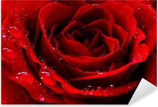 Pixerstick Sticker Rode roos met water druppels