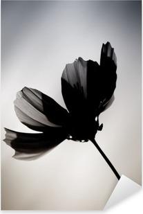 Sticker Pixerstick Schwarze Blume / Eine im Farbton veränderte Cosmea vor einem verwischten Hintergrund.