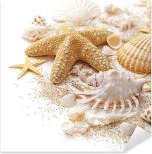 seashells and sand on white background Pixerstick Sticker
