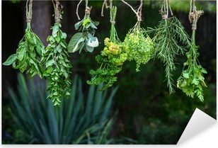 Set of herbs hanging and drying Pixerstick Sticker