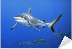 Sticker Pixerstick Sharks